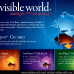 Visible World's 1st Print Ad, created by Kristin Reign for AMA Magazine